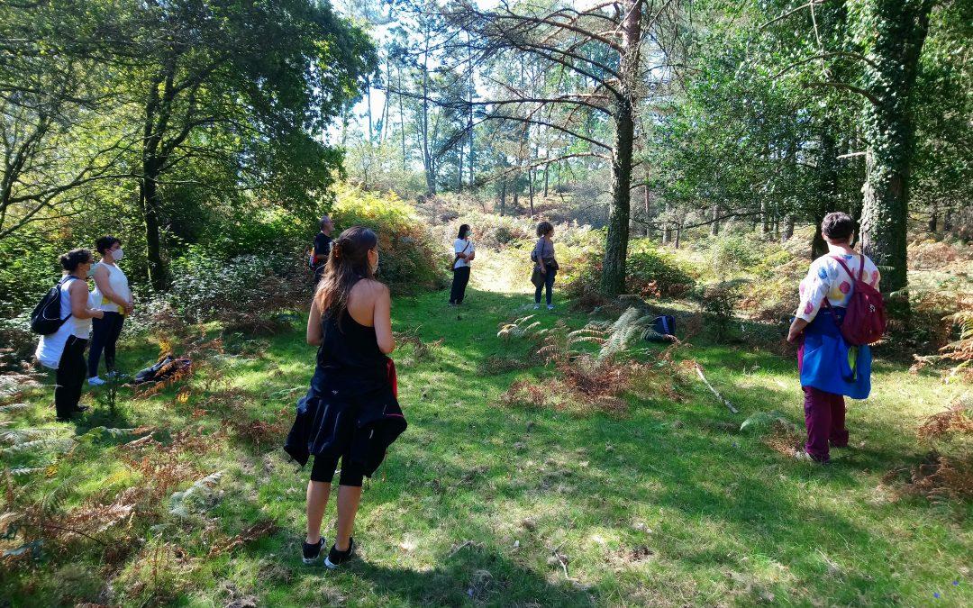 Bain de forêt. Démarche innovante en Galice (Espagne)